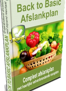 Ervaringen Back to Basic Afslankplan