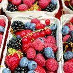 ervaringen vruchtenvasten